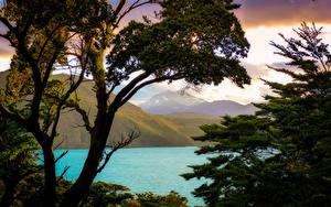 Bilder Chile Gebirge See Ast Patagonia Natur