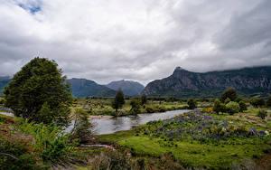 Fotos Chile Gebirge Fluss Landschaftsfotografie Wolke Bäume Patagonia