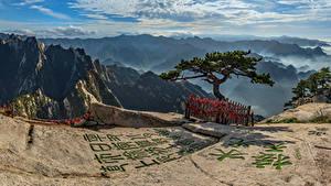 Hintergrundbilder China Berg Hieroglyphen Wolke Bäume Mount Hua