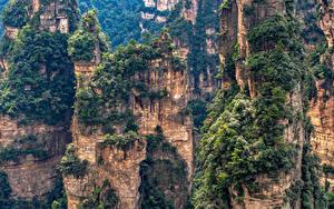 Sfondi desktop Cina Parco Montagne Il dirupo Alberi Zhangjiajie National Forest Park Natura