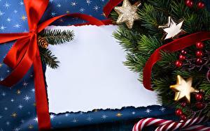 Fotos Neujahr Beere Vorlage Grußkarte Ast Schleife Schneeflocken