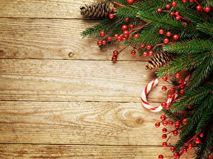 Bilder Neujahr Beere Bretter Ast Zapfen Vorlage Grußkarte