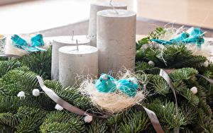 Hintergrundbilder Neujahr Kerzen Ast