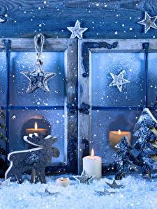 Fotos Neujahr Kerzen Hirsche Fenster Fichten Schnee Stern-Dekoration