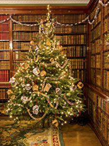 Fotos Neujahr Tannenbaum Kugeln Lichterkette