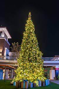 Hintergrundbilder Neujahr Weihnachtsbaum Geschenke Lichterkette