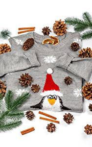 Fotos Neujahr Zimt Sweatshirt Ast Zapfen Mütze