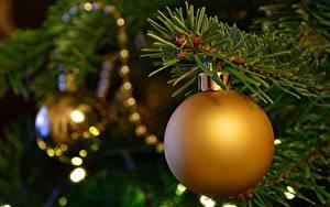Bilder Neujahr Großansicht Ast Weihnachtsbaum Kugeln
