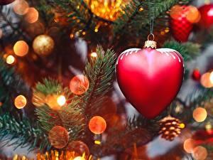 Bilder Neujahr Hautnah Herz Ast