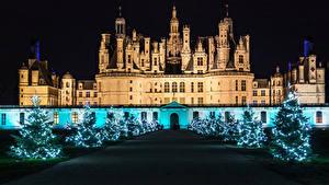 Fotos Neujahr Frankreich Burg Allee Weihnachtsbaum Lichterkette Nacht Chambord