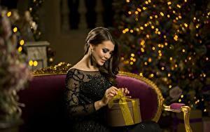 Hintergrundbilder Neujahr Geschenke Sitzend Braunhaarige Mädchens