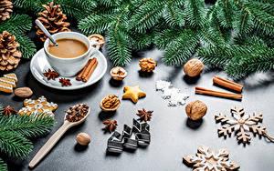 Bilder Neujahr Schalenobst Sternanis Zimt Kekse Kakao Getränk Ast Zapfen Tannenbaum Schneeflocken Tasse das Essen