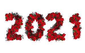 Hintergrundbilder Neujahr Rose 2021 Weißer hintergrund
