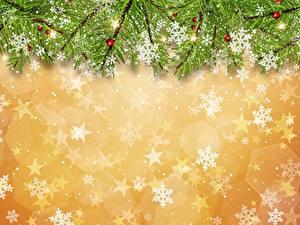 Bilder Neujahr Schneeflocken Ast