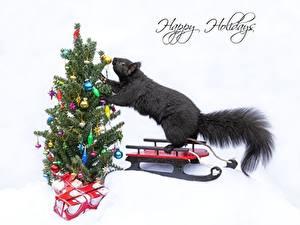 Fotos Neujahr Eichhörnchen Tannenbaum Geschenke Schlitten Text Englischer