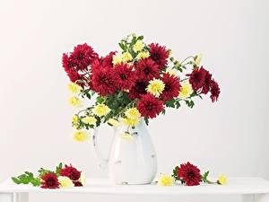 Bilder Chrysanthemen Sträuße Vase Blumen