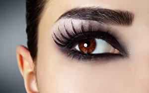 Bilder Nahaufnahme Augen Wimper Make Up Blick junge frau