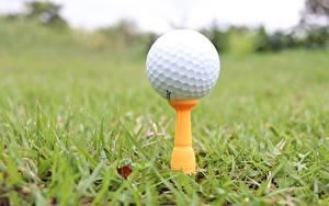 Bilder Großansicht Golf Gras Bokeh Ball sportliches
