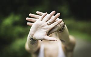 Bilder Großansicht Gestik Hand