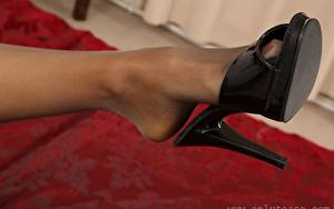 Bilder Großansicht Bein Strumpfhose High Heels