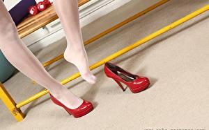 Bilder Nahaufnahme Bein High Heels Strumpfhose junge frau