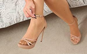 Hintergrundbilder Großansicht Bein High Heels Strumpfhose junge frau