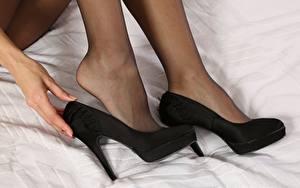 Hintergrundbilder Nahaufnahme Bein Stöckelschuh Strumpfhose junge frau