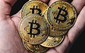 Fondos de escritorio De cerca Dinero Bitcoin Oro color