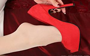 Bilder Hautnah Rot Bein High Heels Strumpfhose junge frau