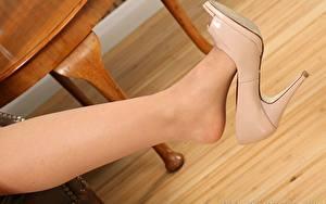 Fotos Großansicht Stöckelschuh Strumpfhose Bein Mädchens