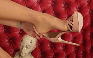 Hintergrundbilder Großansicht Tätowierung Bein High Heels Strumpfhose Mädchens