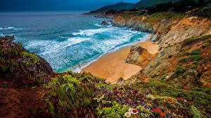 Hintergrundbilder Küste Ozean Vereinigte Staaten Kalifornien Felsen Big Sur, Julia Pfeiffer Burns State Park Natur