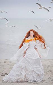 Bilder Küste Rotschopf Brautpaar Kleid