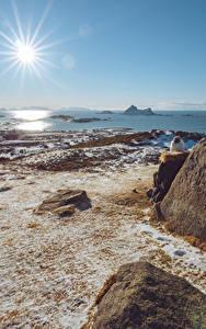 Desktop hintergrundbilder Küste Steine Norwegen Sonne Lichtstrahl  Natur