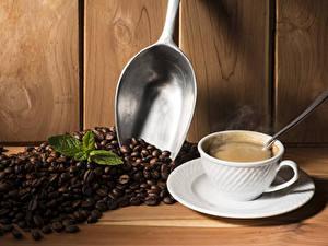 Fotos Kaffee Getränke Tasse Getreide Löffel