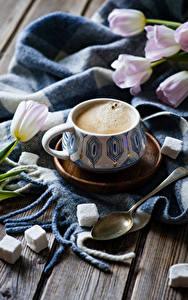Bilder Kaffee Tulpen Bretter Tasse Zucker Löffel