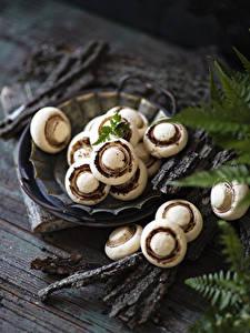 Pictures Cookies Wood planks Design Bokeh Food