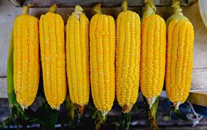 Hintergrundbilder Kukuruz Hautnah Lebensmittel