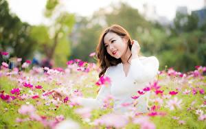Bilder Schmuckkörbchen Asiatische Braunhaarige Lächeln Hand Mädchens