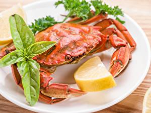 Bilder Krabben Zitrone Großansicht das Essen