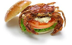 Hintergrundbilder Krabben Gemüse Burger Weißer hintergrund