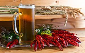 Hintergrundbilder Flusskrebs Bier Becher Ähre Lebensmittel