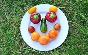 Fotos Kreativ Tomaten Gurke Paprika Gras Teller Gesicht das Essen