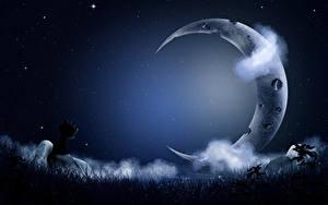 Desktop hintergrundbilder Mondsichel Katze Himmel Stern Wolke Nacht