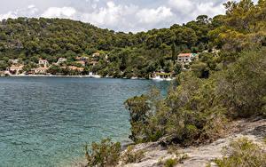 Hintergrundbilder Kroatien Küste Hügel Strauch Mljet Island