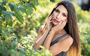 Bilder Unscharfer Hintergrund Hand Haar Schminke Starren Posiert Daniela junge frau