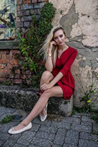Fotos Model Blond Mädchen Sitzt Bein Kleid Starren Daria
