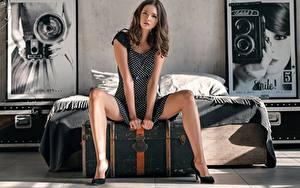 Bilder Bein Sitzend Kleid Bett Braune Haare Hand Posiert Disha Shemetova, Sergey Vasiliev Mädchens
