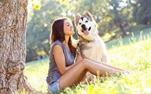 Bilder Hunde Braunhaarige Lächeln Siberian Husky Sitzend Zunge Mädchens