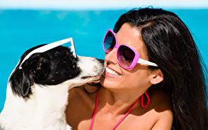 Fotos Hunde Brünette Lächeln Brille Mädchens